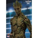 Groot 1/6 - Guardians of the Galaxy - Hot Toys