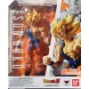 Son Goku Super Warrior Awakening Ver