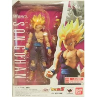 Super Saiyan Son Gohan Battle Damaged