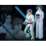 Star Wars Luke Skywalker & Princess Leia