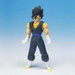 Vegetto - Hybrid Action